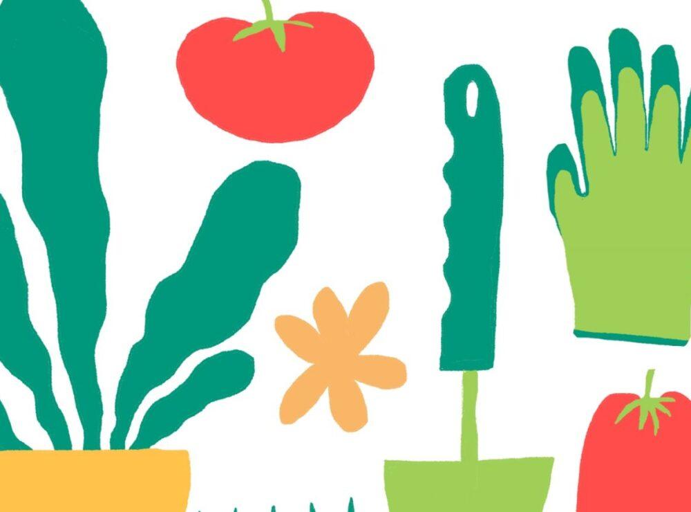 Grow a Garden Nourish Your Curiosity